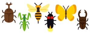 昆虫学の学べる大学