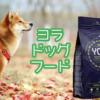 【愛犬家専用】ヨラドッグフードは安全で超低アレルゲン|昆虫食という選択肢